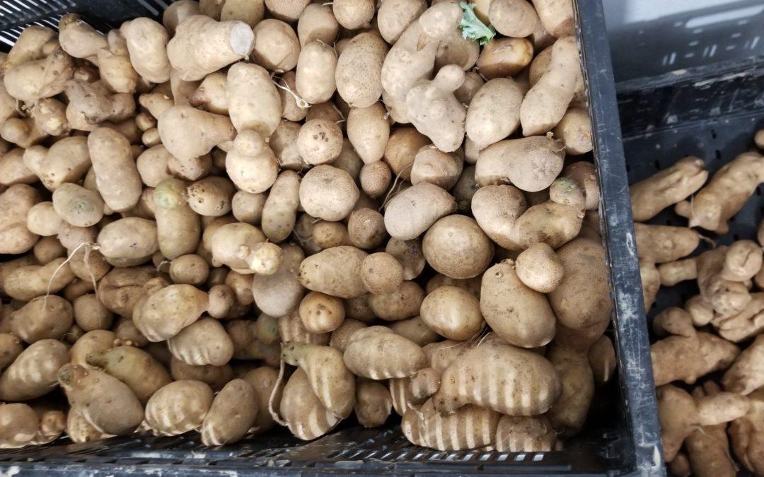 Baby Russet Potatoes